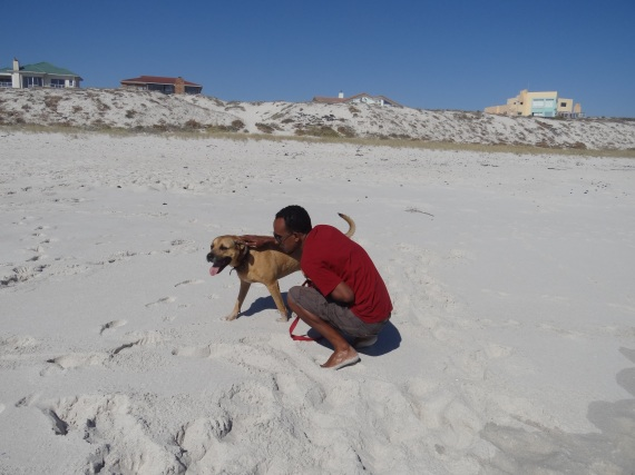 pluto loved the beach