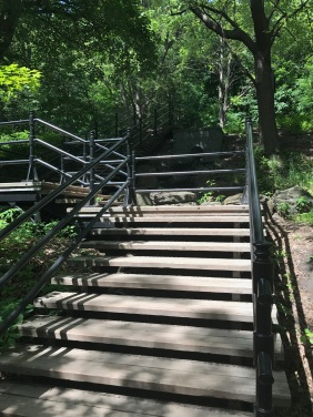 Steps up to Mont Royal