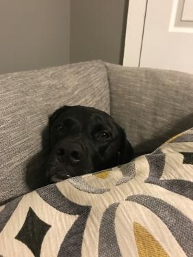 """""""I'm sleepy"""""""